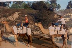 10003505.jpg (KevinAirs) Tags: camels camel kevinairs ocean sunset travel westernaustralia ©kevinairswwwkaozcomau sand sky landscape landscapes beach australia sea jacquihawkins