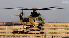 Eurocopter AS 332 Super Puma (Laurent Quérité) Tags: canonfrance canoneos7d canonef100400mmf4556lisusm aéroportdemarseilleprovence marignane france helicoptere aviation aéronef eurocopter as332 superpuma