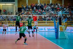 _FPV3496 (américodias) Tags: viana365 benfica sporting voleibol fpv