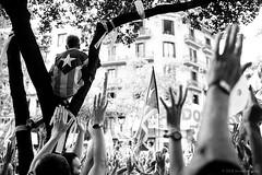 Hands Up (TransientEye) Tags: ilfordddx14 barcelona catalunya catalonia nationalism independence leicam7 ilforddelta400 35mmsummiluxasphfle spain protest blackandwhite
