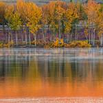 Autumn Morning thumbnail