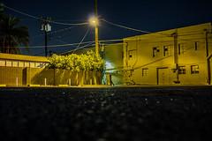 (~filth~filler~) Tags: img92172 canon canont3i digitalshit longexposure longishexposure alley phoenix arizona mcdowell behindtacomich light streetlight dark night building windows wall plants