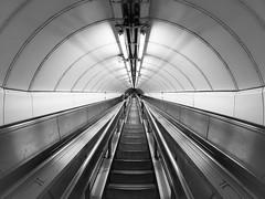 Underground Circles (Torsten Reimer) Tags: england europa tunnel people subway panasonicgx7 bank stairs unitedkingdom london up underground monochrome escalators ceilinglights treppe tube ubahn rolltreppe schwarzweis europe uk blackandwhite gb