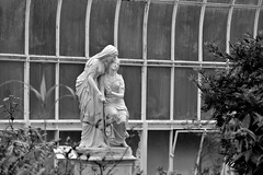 A Moment Carved out of Time (Oliver MK) Tags: a moment carved out time the sisters bethany by john warrington wood glasgow botanic botanical garden indoor greenhouse plants statue statues women art sculpture victorian era windows contrast bw blackwhite uk travel photography nikon d5500 amateur scotland kibble palace
