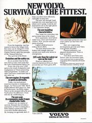 1975 Volvo 244 DL Survival Of The Fittest Aussie Original Magazine Advertisement (Darren Marlow) Tags: 1 2 4 5 7 9 19 75 1975 v volvo 244 d l dl s sedan c car cool collectible collectors classic a automobile vehicle swedish sweden swiss e european europe 70s