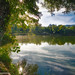 L'étang d'Anneyron, 26140.          _DSC4385AL