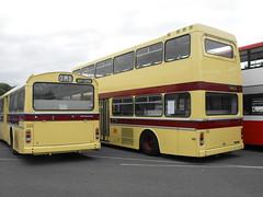 LCT @ Showbus 2018 (11) (Andy Reeve-Smith) Tags: leicestershire leics leicester leicestercitytransport castledonington doningtonpark donington derbyshire derbys showbus 2018 showbus2018