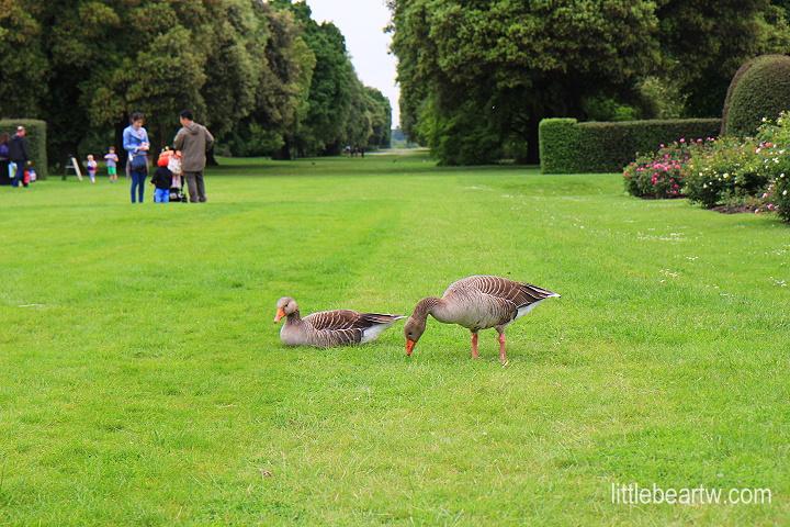 邱園Kew Gardens-22