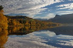 Gylne linjer -|- Golden autumn (erlingsi) Tags: autumn haust golden høst reflectionvolda rotevatn noreg
