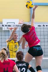 181014_VBTD1-Visp_191 (HESCphoto) Tags: vbtherwil volleyball damen saison1819 99ersporthalle nlb vbcvisp therwil
