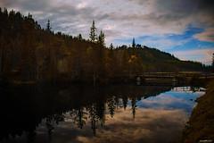 Lake with Bridge (Sparegris1966) Tags: sika orkdal fannrem bridge water lake nikon d500