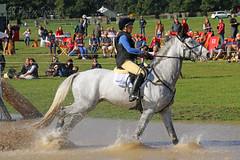IMG_5026_edited-1 (SR Photos Torksey) Tags: horse osberton international trials september 2018 cross country equestrian