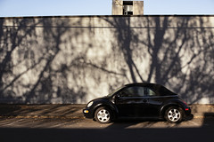 Beetle (Curtis Gregory Perry) Tags: woodburn oregon volkswagen beetle bug shadow tree car auto automobile cabriolet convertible ragtop droptop black nikon d810 branches wall automóvil coche carro vehículo مركبة veículo fahrzeug automobil