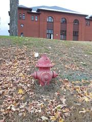 Mueller Co. - Super Centurion - Northfield, MA (nhhydrants) Tags: northfield massachusetts hydrant firehydrant