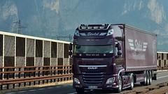 D - Stelzl DAF XF 106 SSC (BonsaiTruck) Tags: stelzl daf lkw lastwagen lastzug truck trucks lorry lorries camion caminhoes