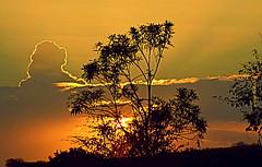Quarta-sunset (sonia furtado) Tags: quartasunset sunset pds contraluz ce ne brasil brazil soniafurtado