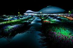 山口ゆめ花博-1000万の花夜景 #2ーYamaguchi Yume Flower Expo - 10 million flowers Night view #2 (kurumaebi) Tags: yamaguchi 阿知須 山口市 nikon d750 山口ゆめ花博 夜 night yamaguchiyumeflowerexpo きららドーム