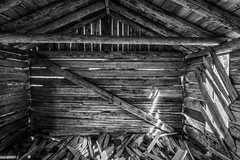 Independence - Ghost Town #1 (USpecks_Photography) Tags: independence ghosttown pitkincounty aspen mining miningtown decay ruins hut cabin