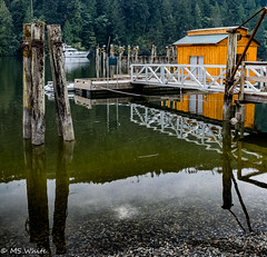 Old Pilings and Boat house, Tod Inlet, Saanich, BC (Picture-Perfect Pixels) Tags: todinlet provincialpark oldpilings water latesummer reflections boat boatdock saanich britishcolumbia