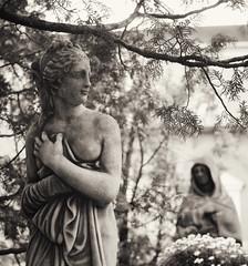 the fey (○ Hanna Lee ○) Tags: statue statues originalphotography stilllifephotography artisticphotography artisticphotographer