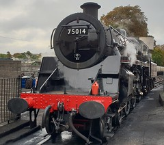 "75014 ""Braveheart"" Dart Valley Railway. Paignton. (christianiani) Tags: 75014 braveheart locomotive steam train paignton station railway britishrailways beautiful 1951 built swindon"