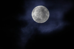 Full Moon (Cederquist Christoffer) Tags: ···············moonlitfullmoonmoonwalkmoonsetlovelunalunarmoonienaturesolarskymoonsun휘인moonstar화사moon문별mjmoonlightspaceastromoonrisemoonshine마마무moonshot솔라 ···············astrologiazodiacnasatelescopemilkywaytarotastronautspaceastronomianebulagalaxyastrophotographyscienceartstarscosmosastrolojiuniverseastromoonastrologyhoroscopeastrophysicsastronomyastrologer ···············nightrunnightwatchnightwingnightnightphotoofthedaynightlifenightmarebatmanscarynightwishnightingalenightfallnightscapedarknightnightmaresnightphotographynightsnightowlnightshiftnightvision halloween sweden gothenburg sverige göteborg nocturnal tamron tamron150600 tamron150600g2 tamrong2 600mm ngc nationalgeographic natgeo