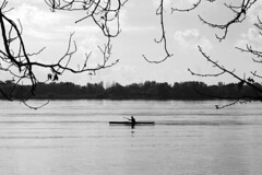 silence (Rosmarie Voegtli) Tags: peace ruhe silent silence water elbe hamburg twigs blackwhite happiness boat man concentrating awareness trees horizon strom river
