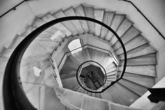 Spiral (jantoniojess) Tags: spiral spiralstaircase stairs staircase escaleras escalones escaleradecaracol escalerahelicoidal blancoynegro blackandwhite monocromático monochrome nikond5200 nikon architecture arquitectura perspectiva perspective sevilla seville museodeartesycostumbrespopularessevilla andalucía españa spain ventana geometría