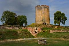 Donjon (JDAMI) Tags: château châteaufort vestiges briques donjon guise 02 aisne picardie france moyenâge médieval nikon d600 tamron 2470 patrimoine journéesdupatrimoine