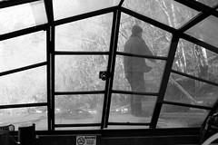Steering stick (Elios.k) Tags: horizontal indoors outdoors people oneperson man japanese boatman ferryman guide tourguide boat woodenstick pole oar frame cover door woodenboat satetsuriver satetsu blackandwhite monochrome mono bw contrast nature trees background dof depthoffield travel travelling december2017 vacation canon 5dmkii camera photography geibikei geibigorge ichinoseki hiraizumi iwateprefecture tōhokuregion tohoku honsu asia japan