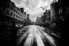 3303 (Elke Kulhawy) Tags: street amsterdam blackandwhite monochrome weitwinkel regentage dark linien strase