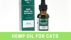 Hemp oil for cats (herbalvatusa) Tags: hemp oil for dogs