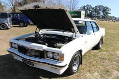 1978 Holden HZ GTS (jeremyg3030) Tags: 1978 holden hz gts monaro cars australian