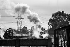Steam power (alanrharris53) Tags: gcr swithland gala autumn 2018 steam engine train rail preservation greatcentralrailway
