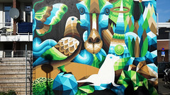 - Watergeusplein Rotterdam - (Jacqueline ter Haar) Tags: mural watergeusplein rotterdam iameelco streetart
