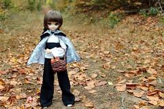 Picking pumpkins to prepare magic potions. (Ninotpetrificat) Tags: muñeca doll dollfiedream dollfie ddh10 mdd volks cesta hojas otoño japandoll asiandoll japantoy handmade hobby kawaii cute wald magician witch brujita pumpking toys