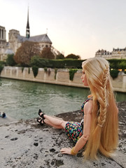PARIS (saratiz) Tags: holiday paris barbie barbiecinderella barbiemadetomove senna notredame