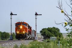 Highball Wagon Mound (Colorado & Southern) Tags: bnsfrailway bnsf emdsd70acet4 emdsd70mac railfanning railroad railfan railway railroads railroading rail rr railroadtrack ratonpass bnsfraton bnsfsratonsubdivision semaphores semaphoresignal newmexico newmexicorailroads newmexicotrain newmexicotrains