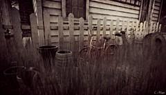 Junk II (Loegan Magic) Tags: secondlife grass theyards yard bicycle bike trash tire pots chairs house window blackandwhite monochrome vintage
