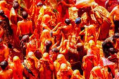 Revelers in Shri Dauji Temple, Chhabria for Holi (AdamCohn) Tags: 016kmtobaldevinuttarpradeshindia abeer adamcohn baldev chhabria india shridaujitemple uttarpradesh colors geo:lat=27408249 geo:lon=77821897 geotagged gulal holi play wwwadamcohncom अबीर गुलाल baldeo