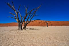 Deadvlei, Namibia (NettyA) Tags: 2017 africa deadvlei namibdesert namibia sossusvlei arid desert sand sanddunes namibnaukluftpark
