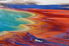 Grand Prismatic Spring - Yellowstone National Park (superpugger) Tags: yellowstonenationalpark nationalparks murica merica landscapes longlenslandscapes canon canon70d lpugliares yellowstone grandprismaticspring nature outdoors geology earth volcanic spring water basin steam geyser geysers grandprismatic planetearth volcanicactivity ancient rock ngs natgeo nationalgeographic outdoornaturephotography americanroadtrip lawrencepugliares