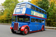KLB596 (PD3.) Tags: browns blue aec rt london transport regent bus buses coach psv pcv preserved september 2018 showbus show castle donington derby park