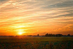 Fire (Alfred Grupstra) Tags: sunset nature sunrisedawn sun ruralscene dusk agriculture landscape sky sunlight yellow outdoors summer field farm scenics meadow dawn morning season