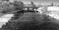 Winter in October (Jacques P Raymond) Tags: snow cityscape river trees calgary alberta canada bridge blackandwhite bw blackwhite