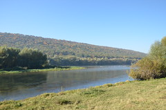 DSC_5482 (Sector2000) Tags: осень золотаяосень парк природа листья деревья automn выходной лес парки