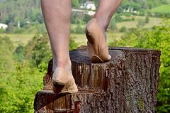 Na pařezu • On the stump (Merman cvičky) Tags: balletslippers ballettschläppchen ballet slipper ballerinas slippers schläppchen piškoty cvičky ballettschuhe ballettschuh soft sole soles arch