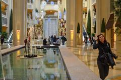 40280-Las-Vegas (xiquinhosilva) Tags: 2010 lasvegas nevada sands usa venetian unitedstates us