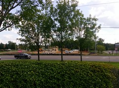 Peeking over the bushes from the bank across the street (l_dawg2000) Tags: 2018 churchrd fastfood frenchfries frosty hamburgers landerscenter new restaurant retail southaven wendys mississippi unitedstates usa