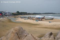Mahabalipuram - Mahabalipuram Beach (CATDvd) Tags: httpwwwflickrcomphotoscatdvd httpwwwdavidcomasnet davidcomas catdvd august2018 bhāratgaṇarājya india índia republicofindia repúblicadelíndia repúblicadelaindia भारतगणराज्य nikond7500 landscape paisaje paisatge beach platja playa mahabalipuram mamallapuram sevenpagodas மகாபலிபுரம் மாமல்லபுரம் mahabalipurambeach tamilnadu tamiḻnāṭu தமிழ்நாடு